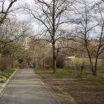 Walking path on Gellért Hill